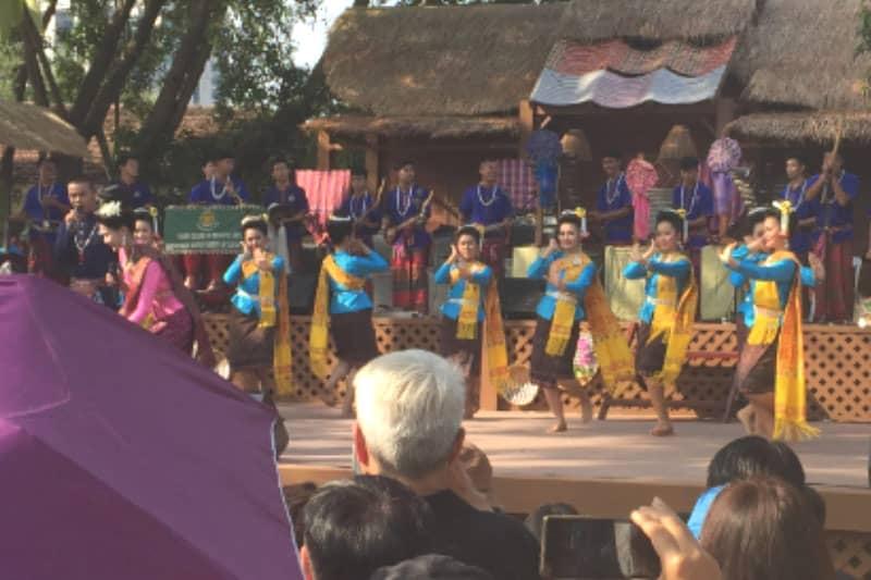 地方の民族舞踊のショー。